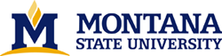 Montana State University online application menu